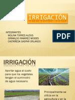 Irrigación-completa