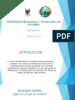 ECOLOGÍA SONORA.pptx