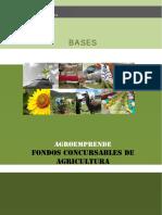 Bases Agroemprende Fc 2010