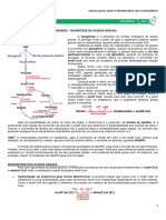 13 - Lipogênese.pdf