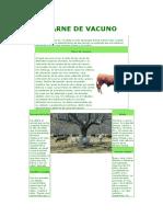 CARNE DE VACUNO.doc