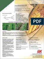 Ricenutrient Doberman