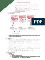 Microsoft Word - 12 - Síndrome Vesicobolhosas.docx