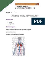 GUIA de TRABAJO Sistemas Cuerpo Humano Rompecabezas.docx