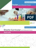 DisenÞo Curricular PBA Sexto.pdf