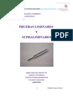 Yolanda Casanova Alvaro.pdf
