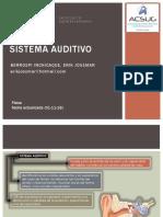 Sistema Auditivo
