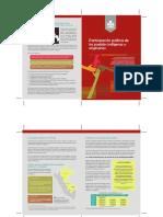 Grupos Indígenas JNE.pdf