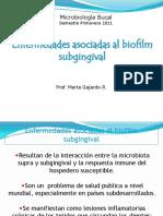 Enfermedades asociadas al biofilm
