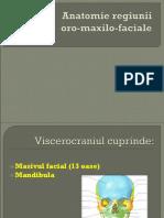 155507925 Lp4 Infectii Fungice