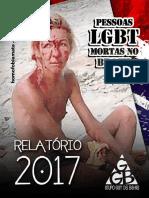 relatorio-2017