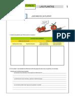 qww-dftg-xcxc-sderrty-z.pdf