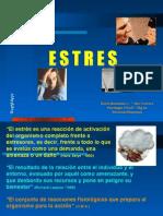 estres-charla4215