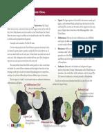 MS_Coal_Studyguide_draft1.pdf
