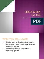 4th Class Circulatory System