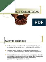 cultivosorganicos1-100401094826-phpapp01