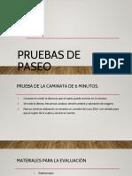 4.- Pruebas de Paseo.pptx