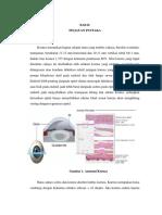 Keratitis new.docx