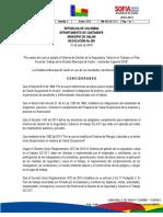 1095 Resolucion Plan de Trabajo Salud Ocupacional