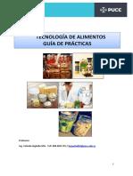 MANUAL GUIAS PRACTICAS TECNOLOGÍA.pdf