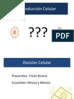 Manual Guias Practicas Tecnología