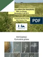 Pyricularia arroz