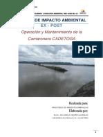 borrador-del-estudio-de-impacto-ambiental-del-proyecto-camaronera-cadetoga.pdf