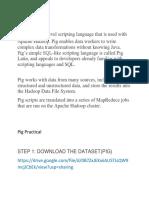 PIG Document.docx