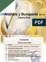 causa raiz.pdf