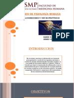 Seminario-3-Neurotransmisores