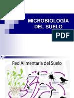 MICROBIOLOGIA DEL SUELO.pptx