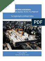 NEF10-Nefro-Insuf_renal_aguda-Chaparro-IRA_Neonatal.pdf