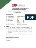 SILABOS.docx