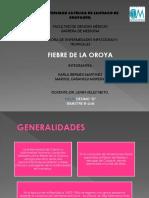 FIEBRE DE LA OROYA.pptx