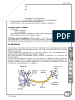 Biologia 6to-Mayo 2