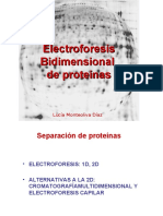 Electroforesis bidimensional