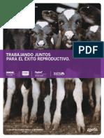 repro_dairy_detailer-spanish_gdr13024_lr.pdf