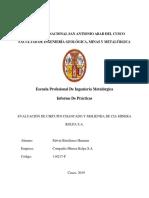 Informe Practicas Profesionales - EBH.pdf