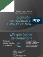 270261106-Clonacion-y-Transgenesis.pptx