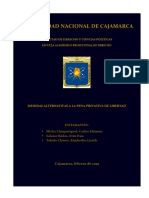 MEDIDAS ALTERNATIVAS.docx