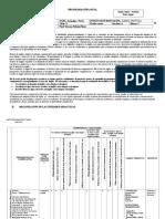 Formatos de Planificacion Curricular-curso de Actualizacion Para Enviar