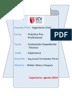 INFORME PRE-PROFESIONAL.docx