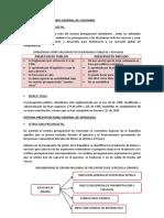 SISTEMA PRESUPUESTARIO GENERAL.docx