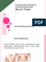 Patofisiologi Kelainan Kongenital