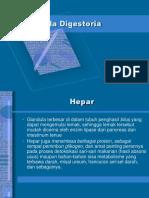 Glandula Digestoria
