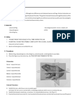 Frog Dissection Guide-converted.docx