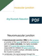 Neuro muscular junction NN.ppt