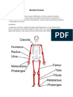 Anatomy and Physiology of Facial Bones.docx