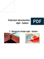 Introducere structuri mixte otel beton