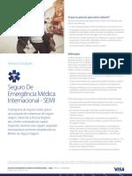 Visa Seguro Medico Viagens Iems1496786864115818539pdf